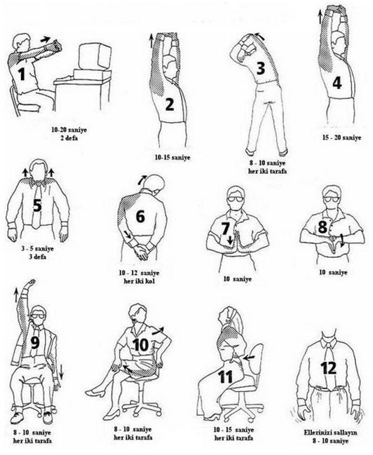 basit-egzersizler